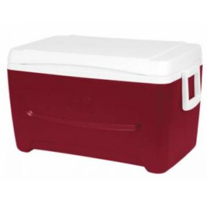 Igloo Island Breeze 48 Cooler